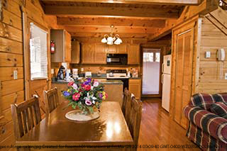 219 pigeon forge 3 day pet friendly 1 bedroom cabin for Luxury pet friendly cabins pigeon forge