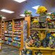The Westgate Resort Pigeon Forge souvenirs