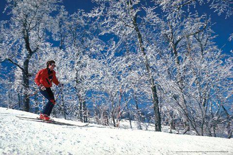 269 Banner Elk Best Western Mountain 5 Day Thanksgiving