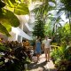 Best Western Plus Hotel foliage