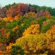 Majestic Autumn Aerial View from the Branson, Missouri Adventure Ziplines.