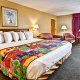 Dayton House Resort 1 king room poolside
