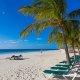 Island Palm Resort beach volleyball