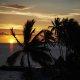 Las Palmas by the Sea ocean palms sunset