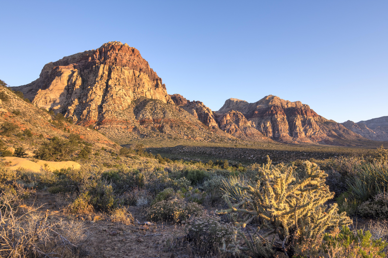 Morning light in harsh desert landscape