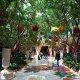 Wynn Las Vegas Resort Garden