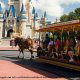 A horse drawn carriage ride through Disneys Magic Kingdom Vacation in Orlando Florida.