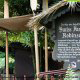 The Swiss Family Robinson attraction in Disneys Magic Kingdom Vacation in Orlando Florida.