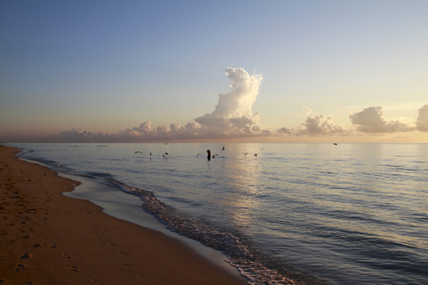 South Beach, florida sunrises
