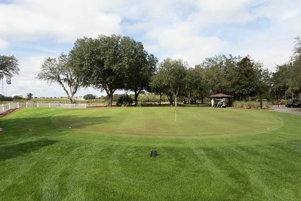 Mystic Dunes Resort and Golf Club green