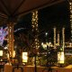 Rosen Inn Pointe night dining