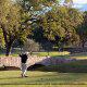 Golf Court View At Staybridge Suites Stone Oak In San Antonio, TX.