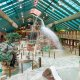 The Westgate Resort Pigeon Forge waterpark