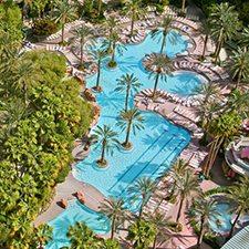 Las Vegas Vacations - Flamingo Las Vegas Hotel and Casino vacation deals
